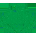 govt_punjab_logo
